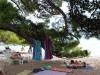 brela-maestral-beach-pine