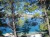 okrug-donji-pine