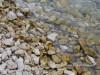 primostem-beach-jelacicapebblesea