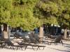 vodice-olympia-beach-pine