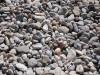 zaostrog-aparthotel-morenia-beach-pebble