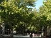 omis-street